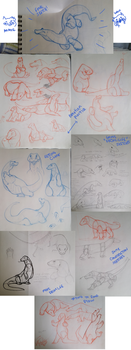 College For Character Design : College character design process komodo dragon by
