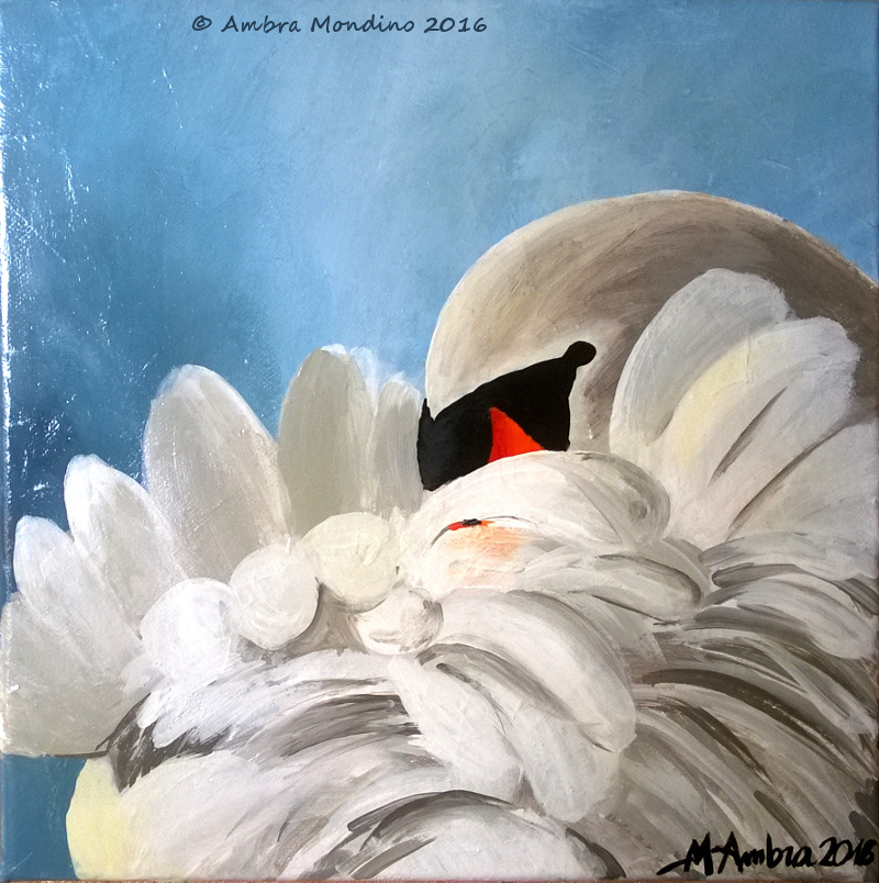 Peekaboo - Mute swan by flysch