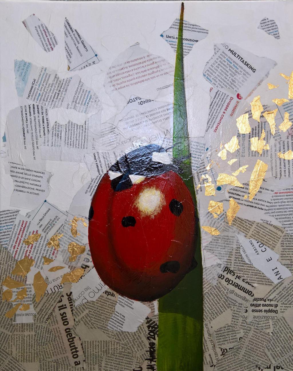 Ladybird by flysch
