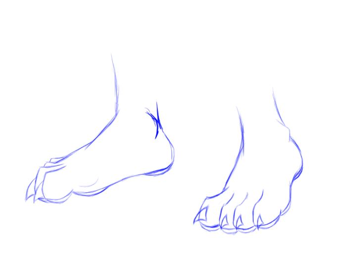 how to draw wolf feet