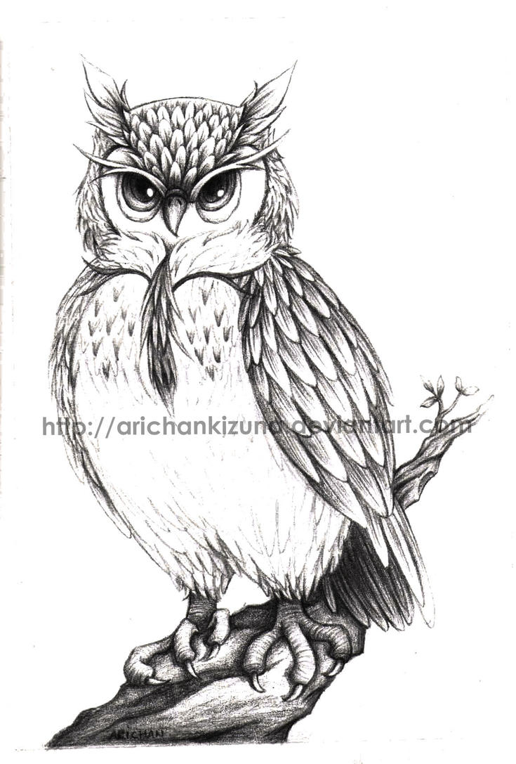 Owl - comission by ArichanKizuna