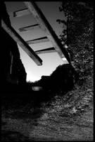echelle by amok451