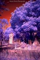 infrared graves 2 by Sminott