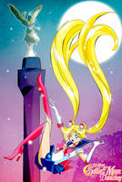 Sailor Moon 20 Anniversary by Danichuy