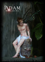 OOAK Woodland Fae 'Adam' by fairytasia