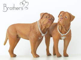 Dogue de Bordeaux commission