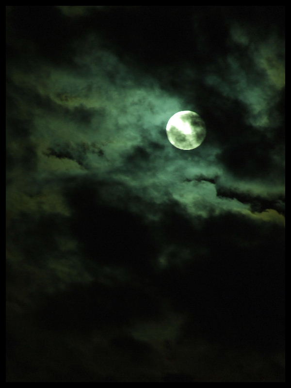 Full Moon by Feri-kun