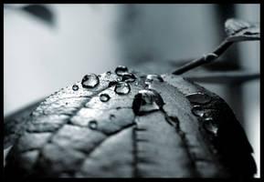 gloomy tears by ssilence