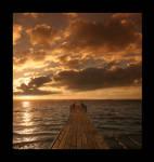 the warm sunset