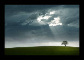 a day without rain by ssilence