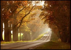 autumn sun by ssilence