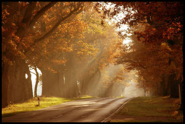 reprise of autumn sun by ssilence