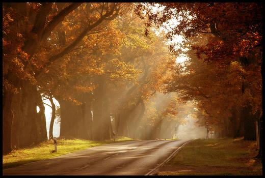reprise of autumn sun