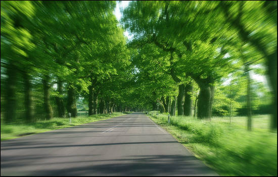 trip into green