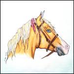 Pretty Little Pony by DejaVuRio
