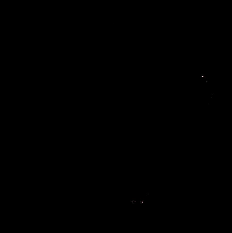 Line Drawing Of Dog : Dog lineart transparent by sunnyadopts on deviantart
