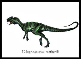 Dilophosaurus Painted by Danillo-Toga
