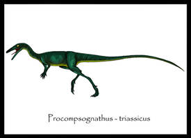 Procompsognathus triassicus by Danillo-Toga
