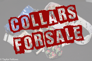 Collars for Sale!