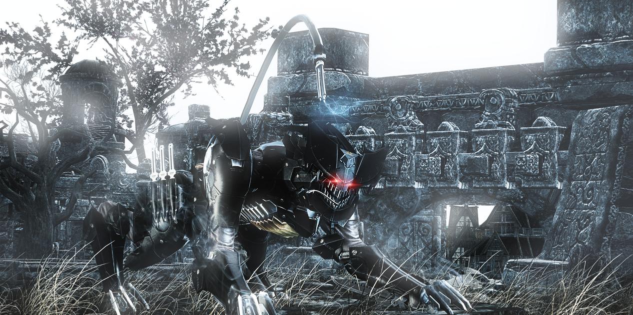 Metal Gear Rising Revengeance Wolf by MrShlapa