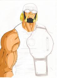 NWO Hollywood Hulk Hogan