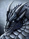 Steel Dragon Portrait