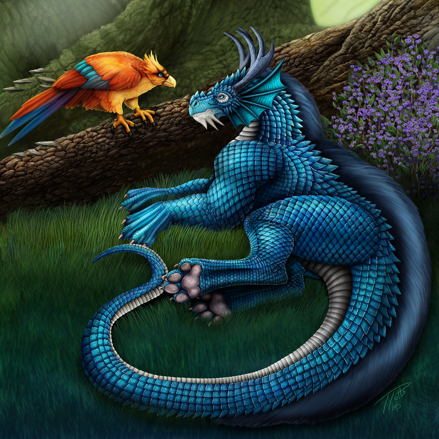 Blaque rod intrigue dragon enjoyment three