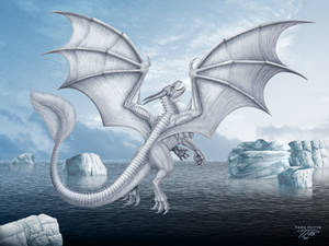 Arctic Snow Dragon