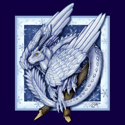 Januarius the Snow Dragon by DragonosX