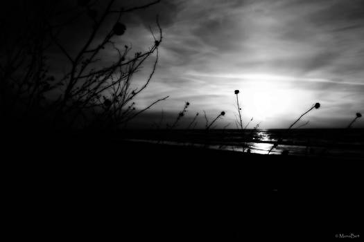 ..:Baltic:..