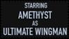 Ultimate Wingman by hoopas