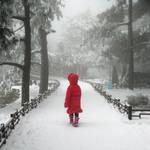 Cold Fairyland II