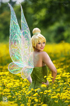 Tinker Bell and Wings