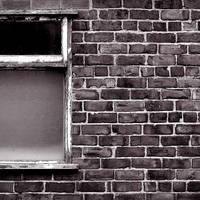 Windowpane by arctoa