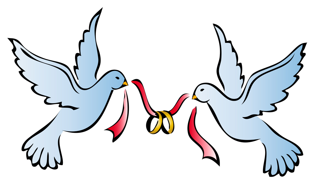 wedding dove and rings