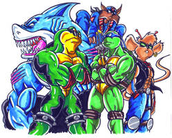 the old mutant cartoons