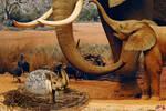Elephant Hatchling