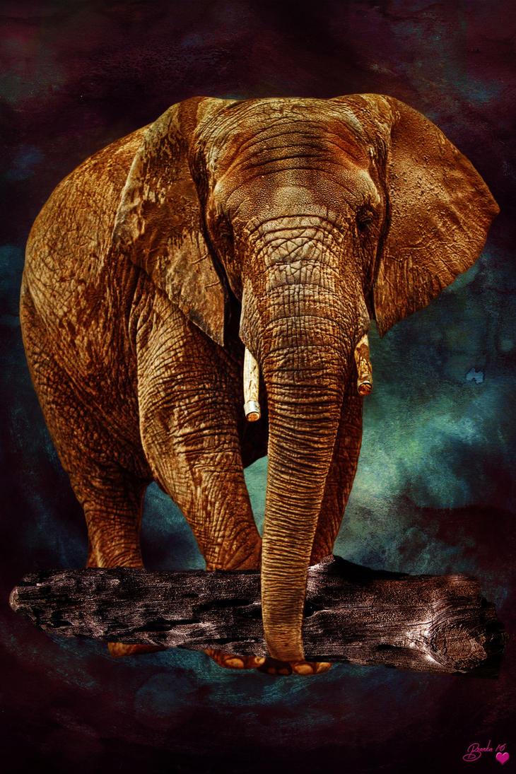Big Foot of Africa by Branka-Johnlockian