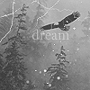 Dream icon by proHjects