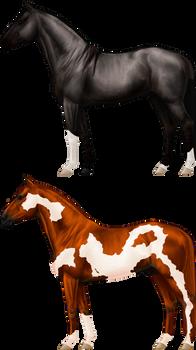 [CLOSED] Shiny Horse Adopts