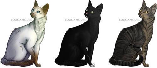 [CLOSED] Barn Cats