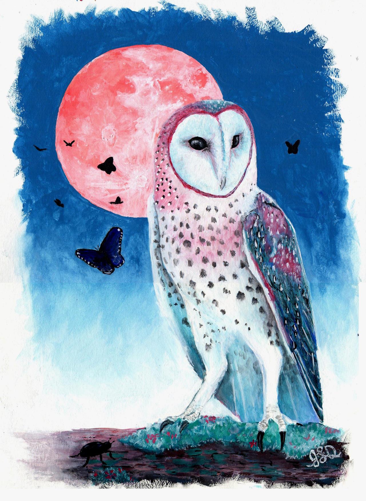 Pink Moon by Bewildermunster