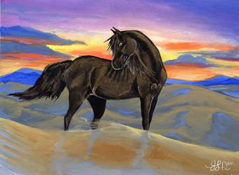 Black Desert by Bewildermunster