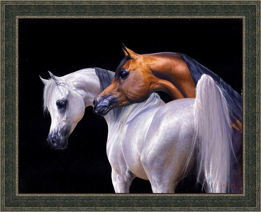 Arabian horses art by baroood on deviantart - Arabian horse pictures ...