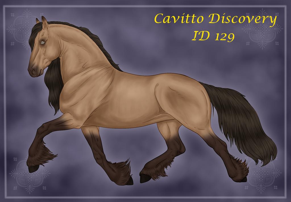 Cavitto Discovery 129 by Zandromina