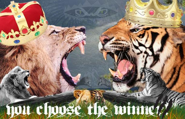 tiger vs lion by MRANDMRSFOSTER on DeviantArt