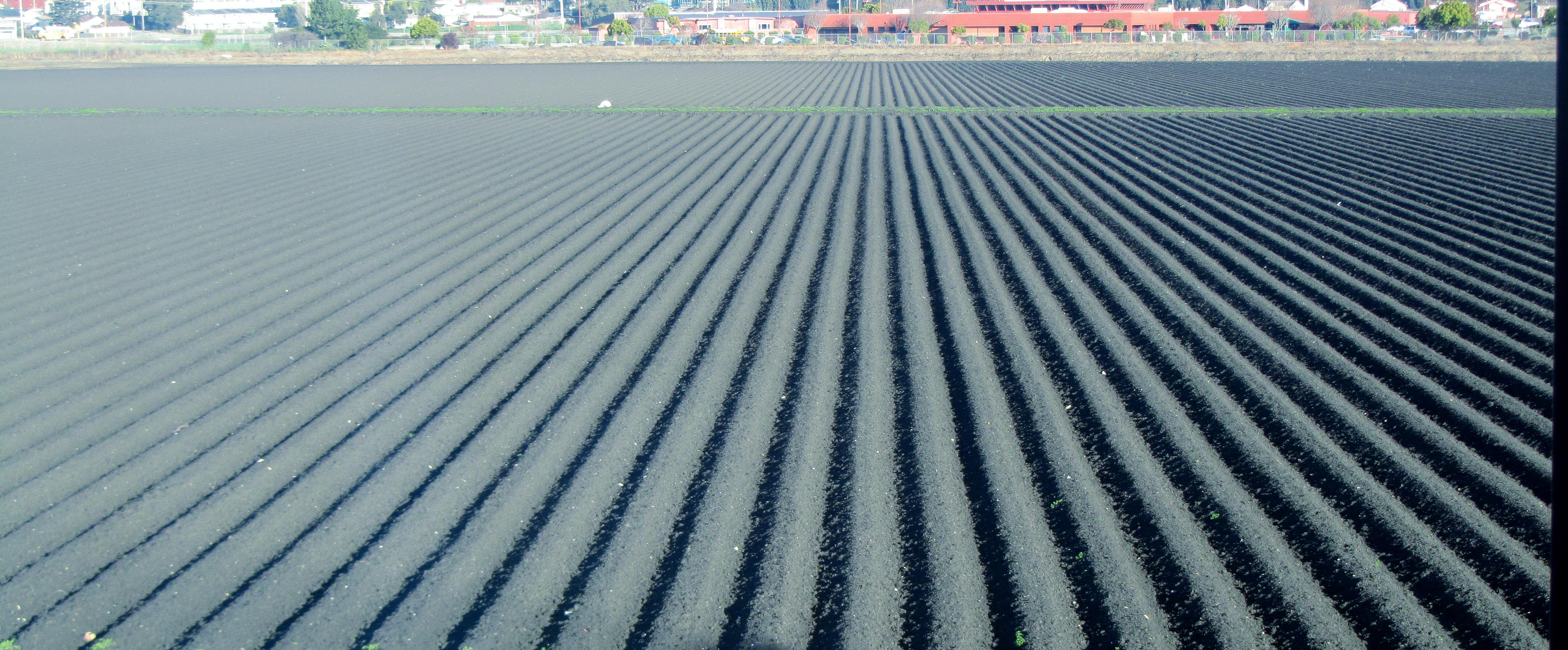 Forever fertile soil by tundra timmy on deviantart for Fertile soil 07