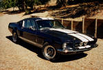 Early GT500