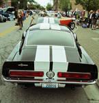 Lemans Stripes