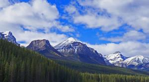 Sentinels by tundra-timmy